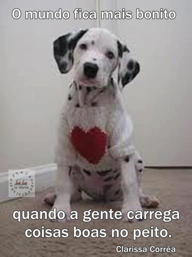Fabio King - Special Love