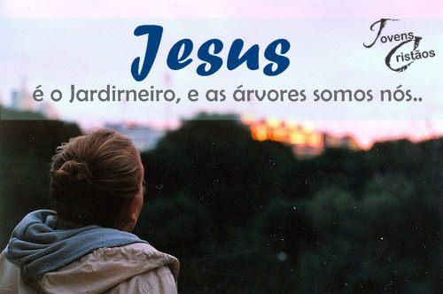 Jesus o jardineiro e as rvores somos n s imagens for O jardineiro e jesus e as arveres somos nozes